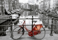 States and Cities